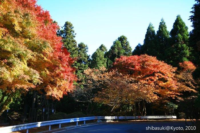 20101119_Kyoto-122_比叡山延曆寺 西塔_1.JPG