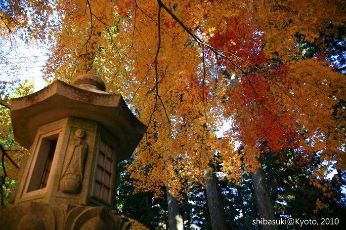 20101119_Kyoto-129_比叡山延曆寺 西塔_1.JPG
