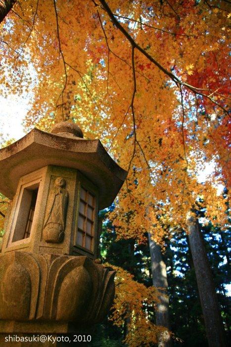 20101119_Kyoto-134_比叡山延曆寺 西塔_1.JPG