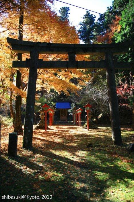 20101119_Kyoto-141_比叡山延曆寺 西塔_1.JPG