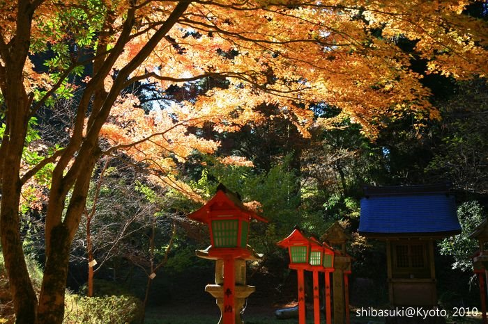 20101119_Kyoto-148_比叡山延曆寺 西塔_1.JPG