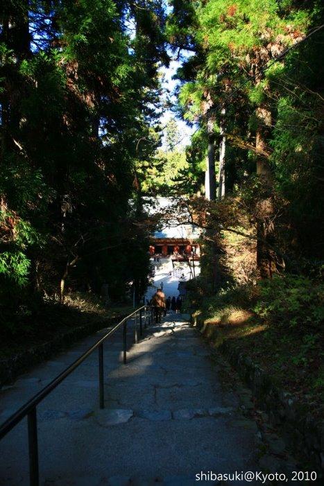 20101119_Kyoto-155_比叡山延曆寺 西塔_1.JPG