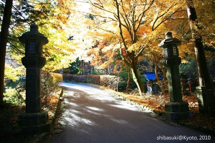 20101119_Kyoto-173_比叡山延曆寺 西塔_1.JPG