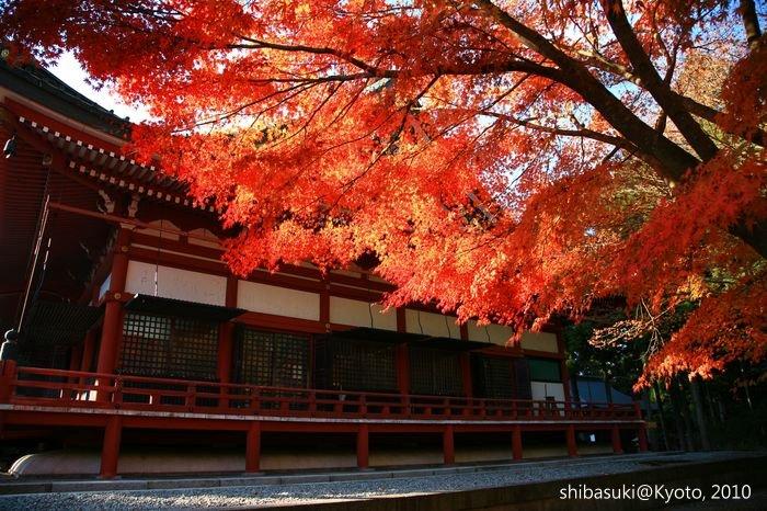 20101119_Kyoto-187_比叡山延曆寺 大講堂_1.JPG