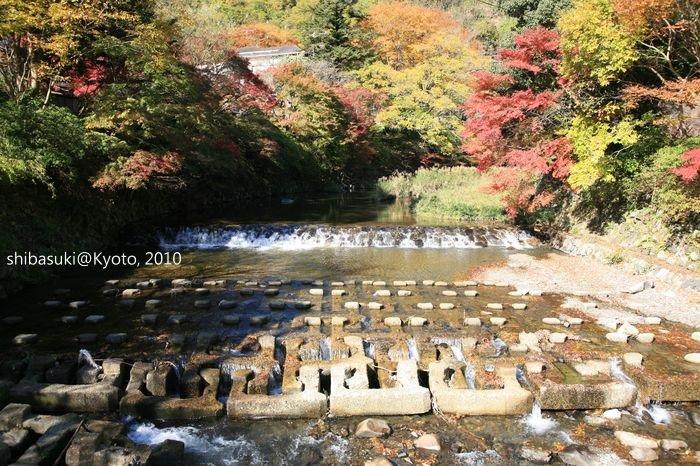 20101119_Kyoto-8_八瀨_1.JPG