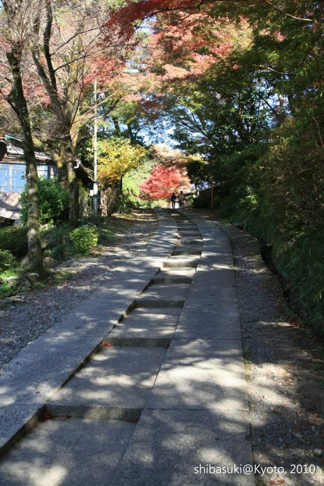 20101119_Kyoto-10_八瀨_1.JPG