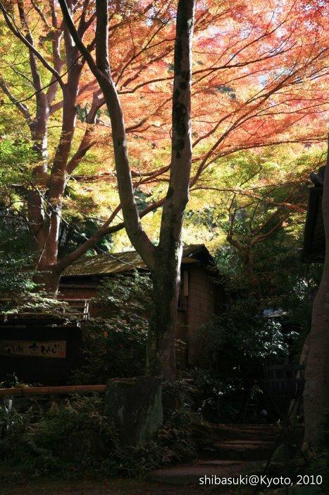 20101119_Kyoto-18_八瀨_1.JPG