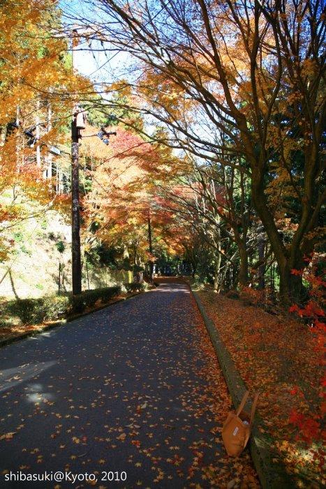 20101119_Kyoto-77_比叡山延曆寺 橫川_1.JPG