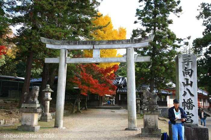 20101120_Nara-77_手向山八幡宮_1.JPG