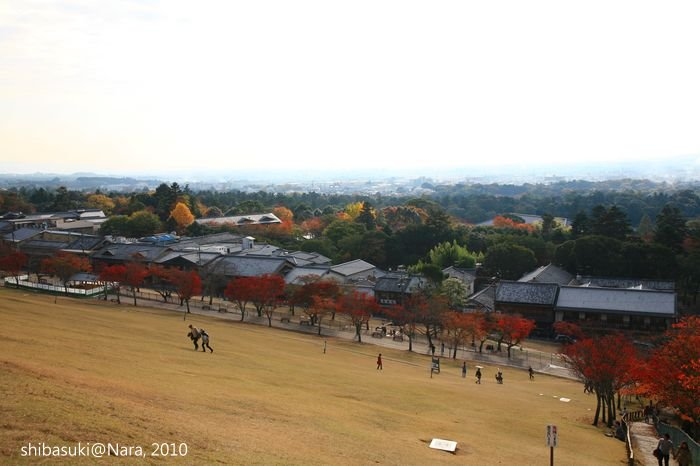 20101120_Nara-105_若草山_1.JPG