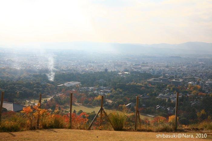 20101120_Nara-110_若草山_1.JPG