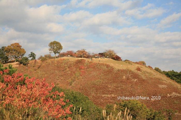 20101120_Nara-121_若草山_1.JPG