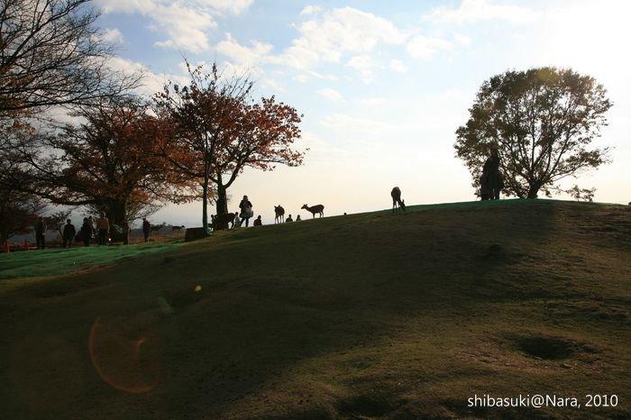 20101120_Nara-145_若草山山頂_1