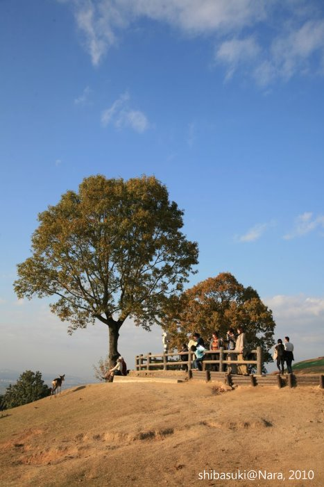 20101120_Nara-154_若草山山頂_1