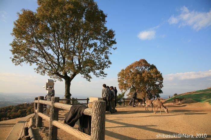 20101120_Nara-162_若草山山頂_1