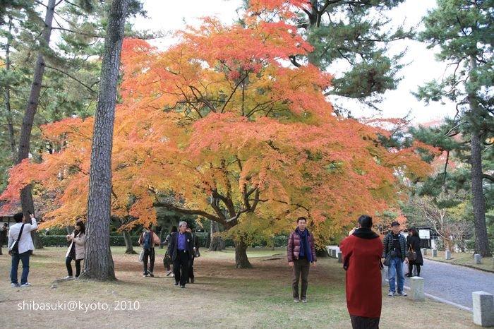 20101121_Kyoto-55_京都御苑_1.JPG