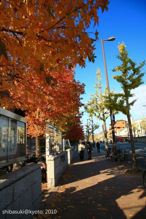 20101121_Kyoto-66_同志社大學_1.JPG