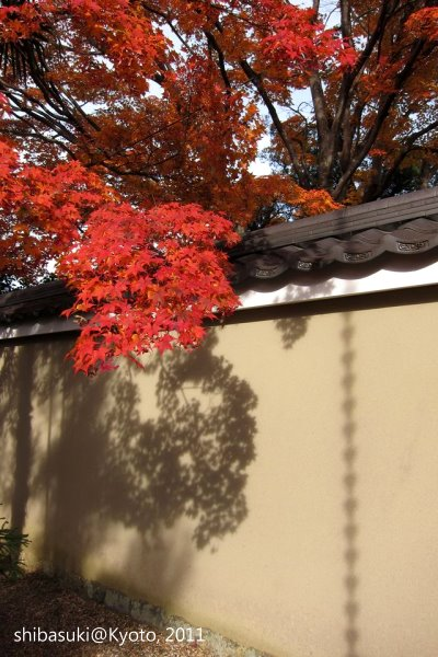 20111129_Kyoto-8_源光庵_1.JPG