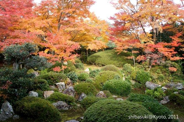 20111129_Kyoto-27_源光庵_1.JPG