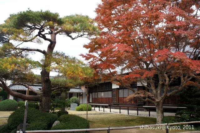20111129_Kyoto-71_源光庵_1.JPG