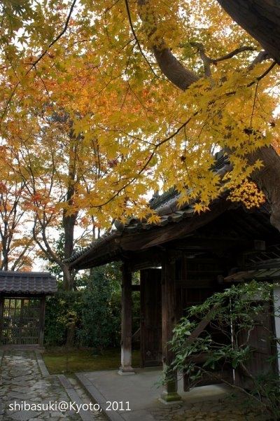 20111129_Kyoto-73_源光庵_1.JPG