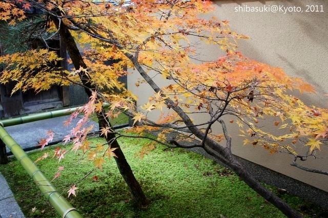 20111129_Kyoto-91_光悅寺_1.JPG