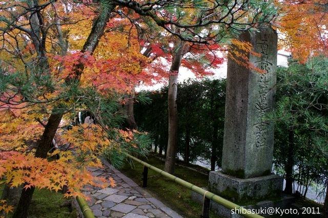 20111129_Kyoto-95_光悅寺_1.JPG