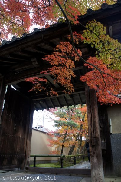 20111129_Kyoto-106_光悅寺_1.JPG
