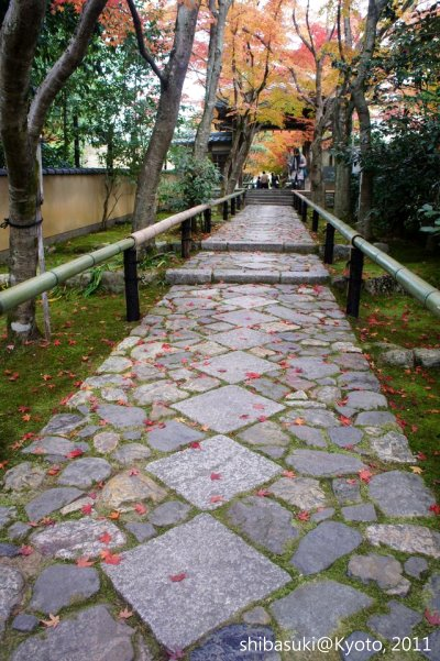 20111129_Kyoto-111_光悅寺_1.JPG