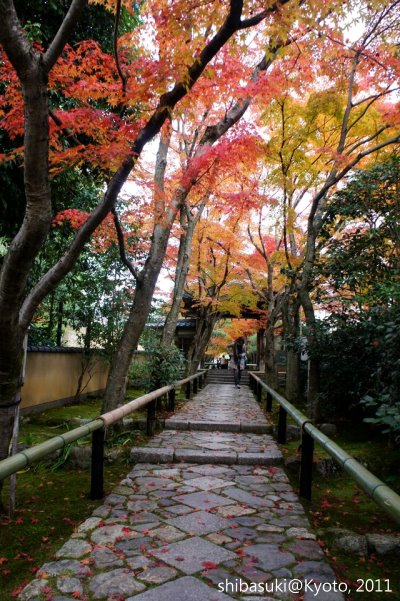 20111129_Kyoto-112_光悅寺_1.JPG