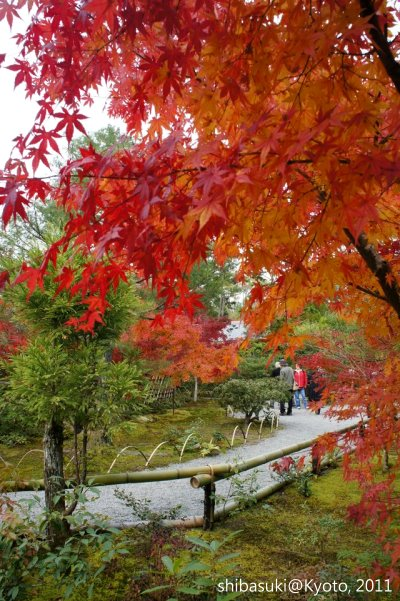 20111129_Kyoto-118_光悅寺_1.JPG