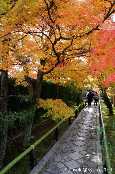 20111129_Kyoto-140_光悅寺_1.JPG