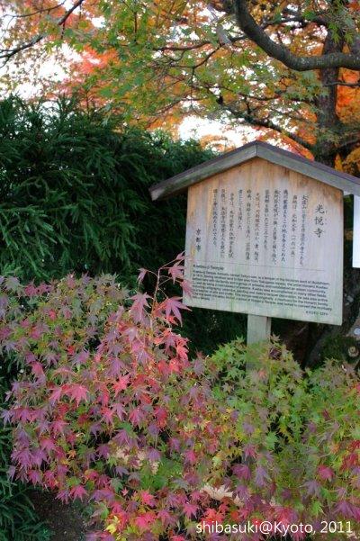 20111129_Kyoto-144_光悅寺_1.JPG