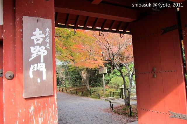 20111129_Kyoto-146_常照寺_1.JPG