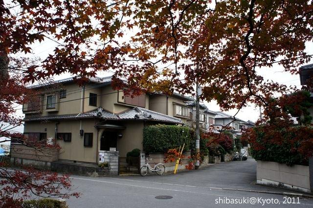 20111129_Kyoto-147_常照寺_1.JPG