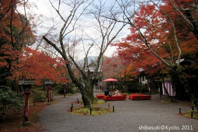 20111129_Kyoto-150_常照寺_1.JPG