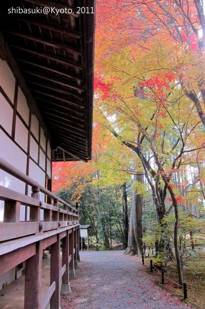 20111129_Kyoto-155_常照寺_1.JPG