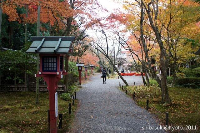 20111129_Kyoto-160_常照寺_1.JPG