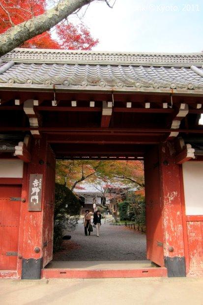 20111129_Kyoto-164_常照寺_1.JPG