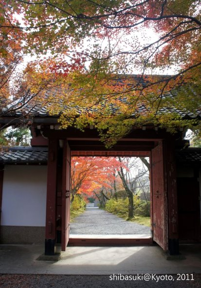 20111129_Kyoto-167_常照寺_1.JPG
