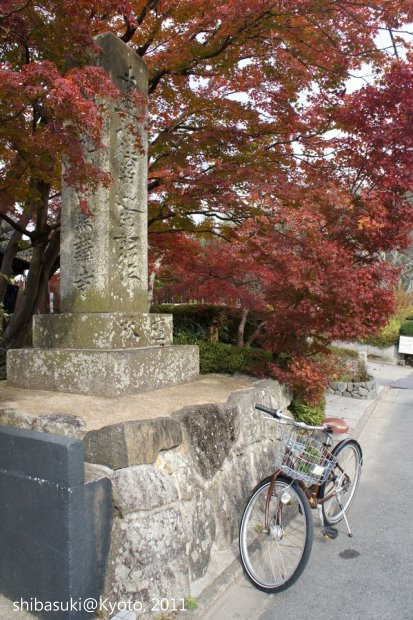 20111129_Kyoto-169_常照寺_1.JPG