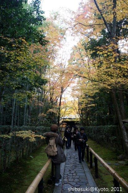 20111129_Kyoto-195_大德寺高桐院_1.JPG
