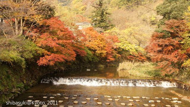 20111130_Kyoto-5_八瀨_1.JPG