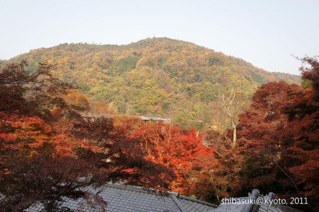 20111130_Kyoto-12_八瀨琉璃光院_1.JPG