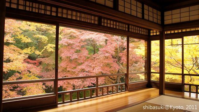 20111130_Kyoto-20_八瀨琉璃光院_1.JPG