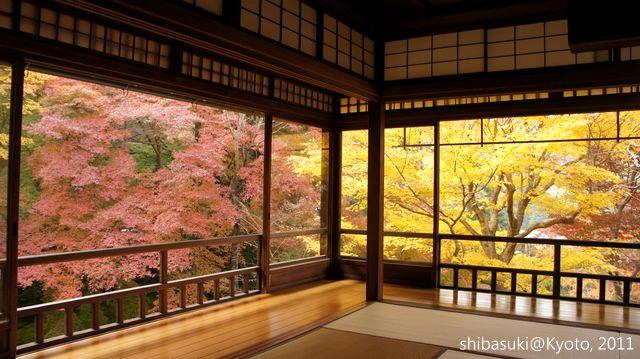 20111130_Kyoto-21_八瀨琉璃光院_1.JPG