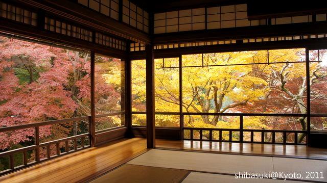20111130_Kyoto-22_八瀨琉璃光院_1.JPG