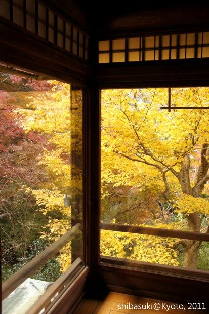 20111130_Kyoto-31_八瀨琉璃光院_1.JPG