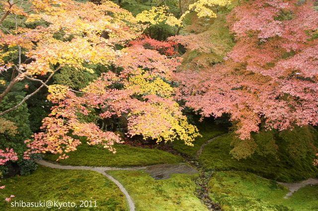 20111130_Kyoto-32_八瀨琉璃光院_1.JPG