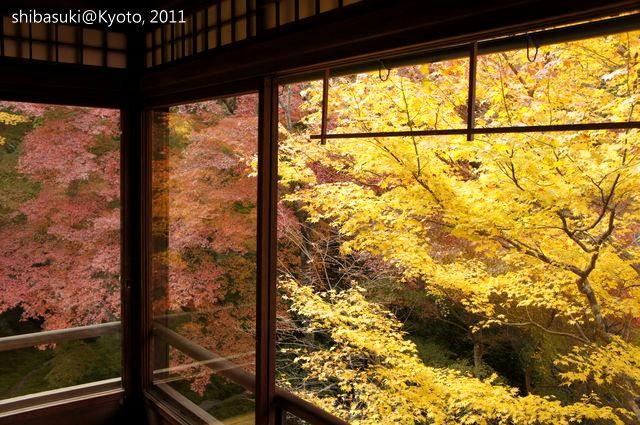 20111130_Kyoto-35_八瀨琉璃光院_1.JPG